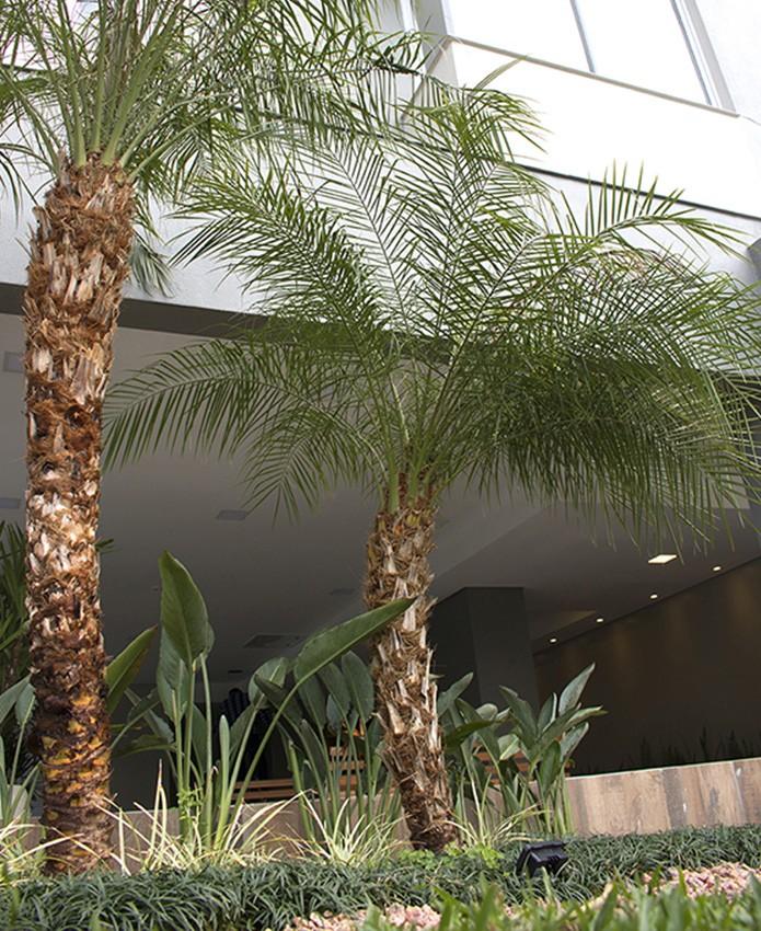 residencial-acordes_3_1808.jpg
